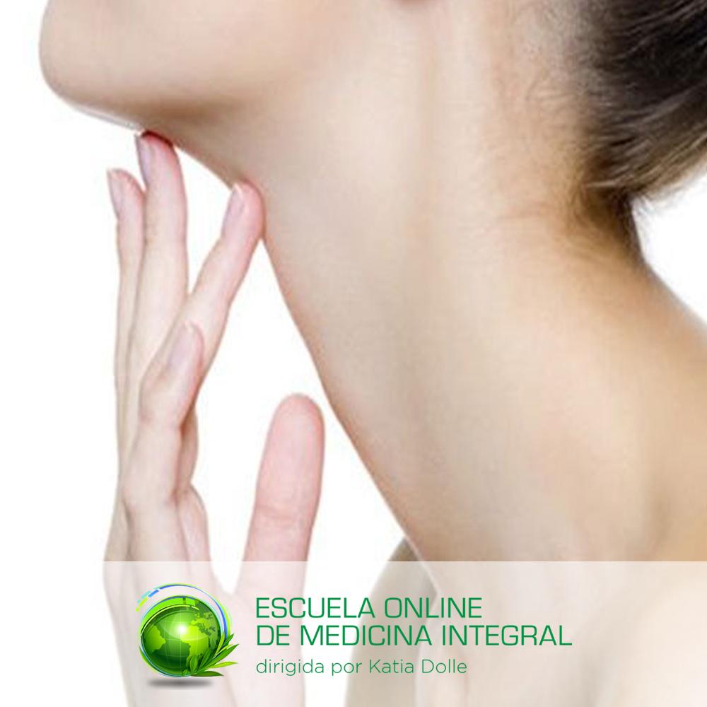 Tratamiento Natural Para Hipotiroidismo Escuela Online Katia Dolle